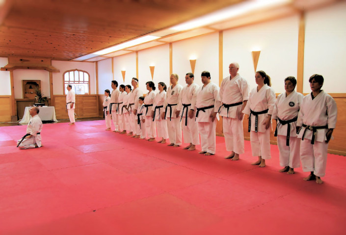 the sport karate center