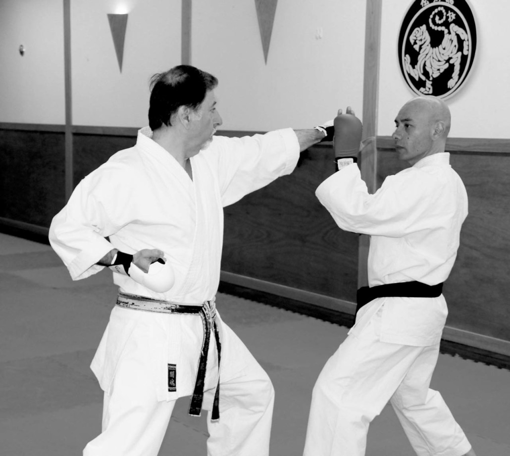 karate training photo 2013