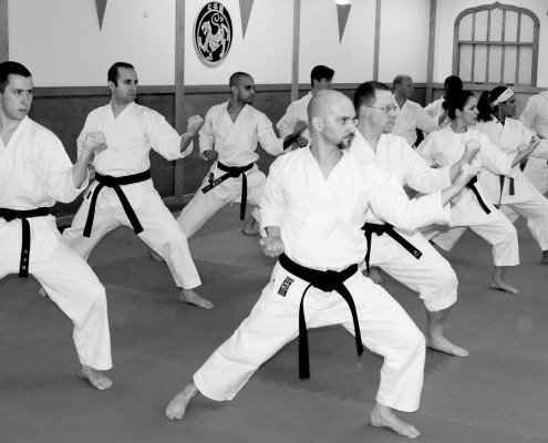 black belt karate training