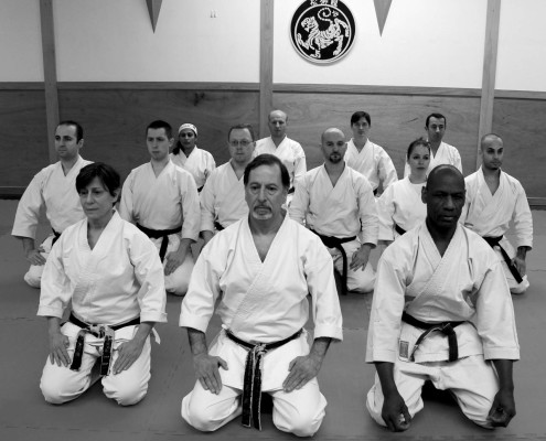 the dojo karate centre